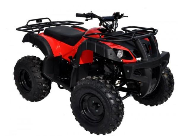 """ATV 006D 10"""""""